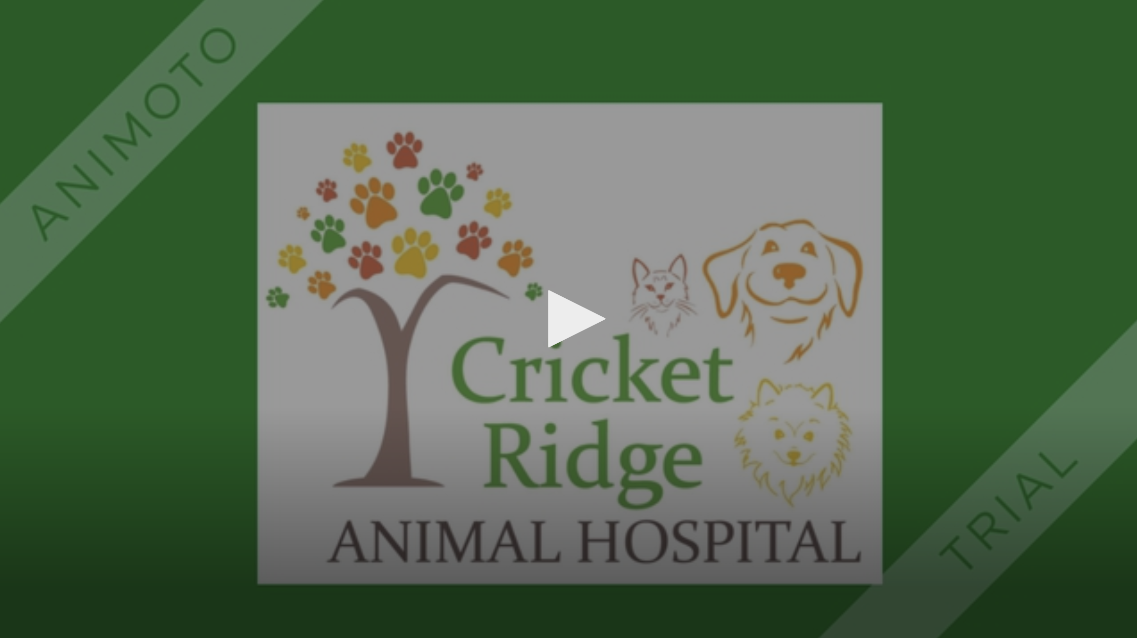 Get to know Cricket Ridge Animal Hospital